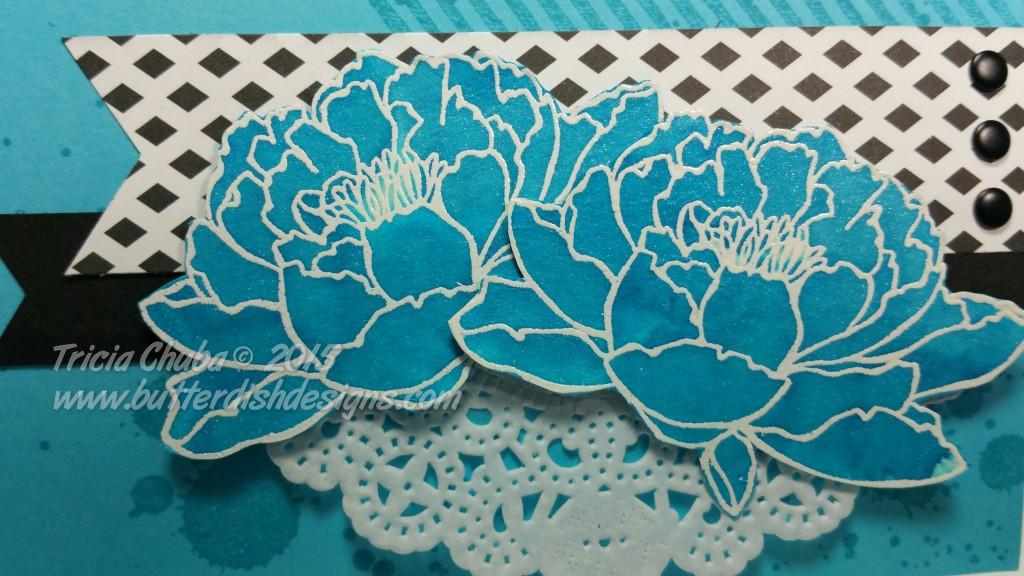 Blue WC Flower Closeup